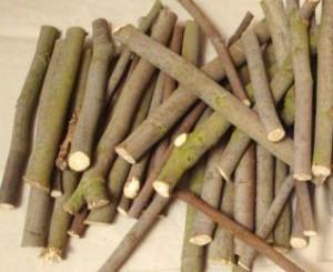 Divination par les bouts de bois, la palomancie